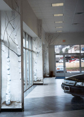 Central CT Volvo Dealership Winter Birch Trees